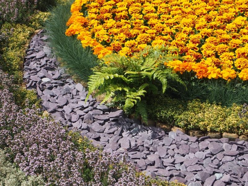 Small Circle Of Plum Slate Chips Alongside Orange Flowers