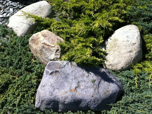 Welsh quartz boulders 200 400mm decorative aggregates for Landscaping rocks quartz