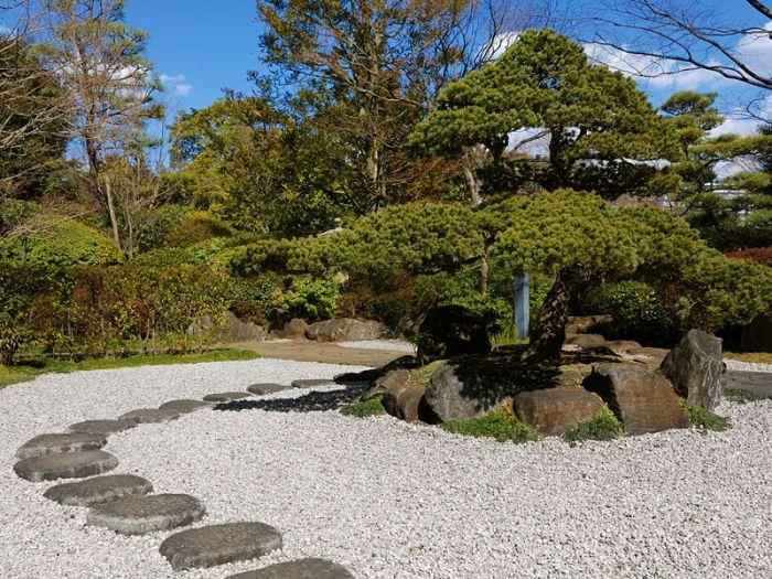 Dove grey limestone gravel 14 20mm decorative aggregates for Garden design derbyshire