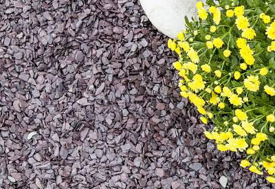 Plum and Blue Slate Mini Mulch
