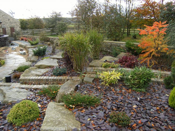 Plum slate amongst rockery in garden