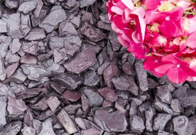 Plum Slate Chippings 40mm