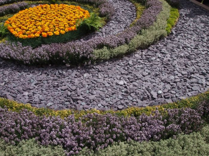 Plum slate chips in a circular flower bed