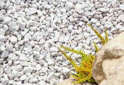 Dove Grey Limestone Gravel 14-20mm